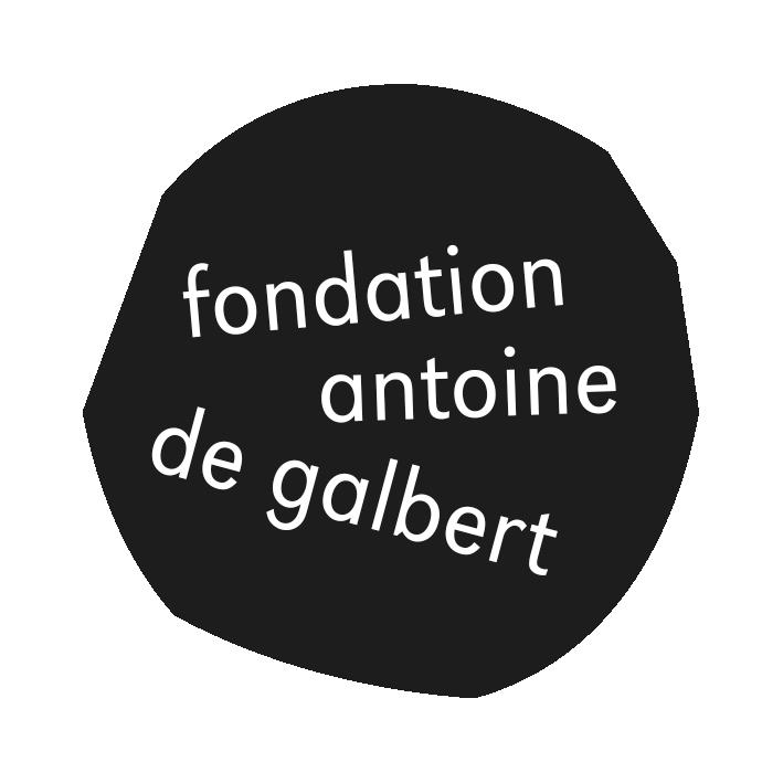fondation Antoine de Galbert